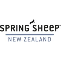 Spring Sheep New Zealand